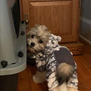 Puppy/Dog Christmas Onesie/Costume